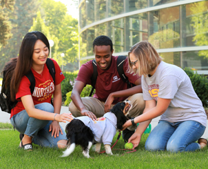 Students playing with a dog