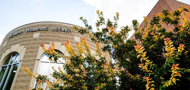 library exterior with trees in front of it