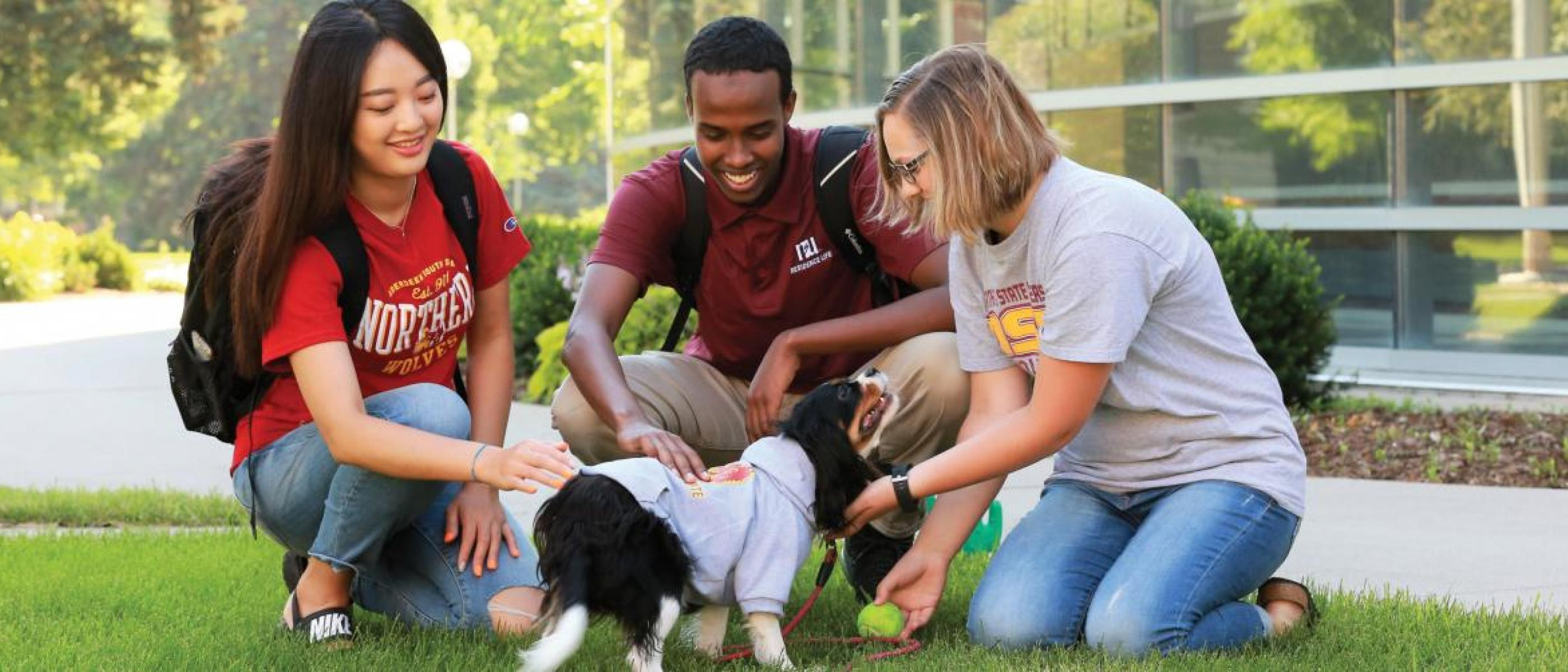 Students playing with a dog on the campus green